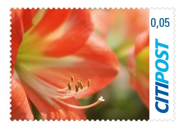 Briefmarke Ergänzungswert Amaryllis