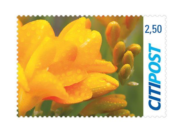 Briefmarke Freesie