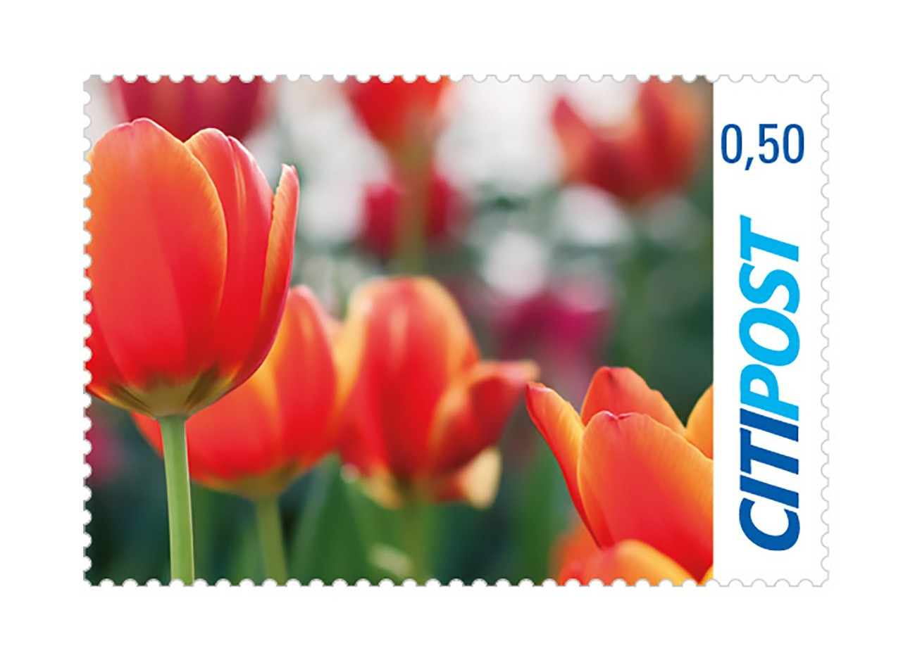 Markenheft Postkarte