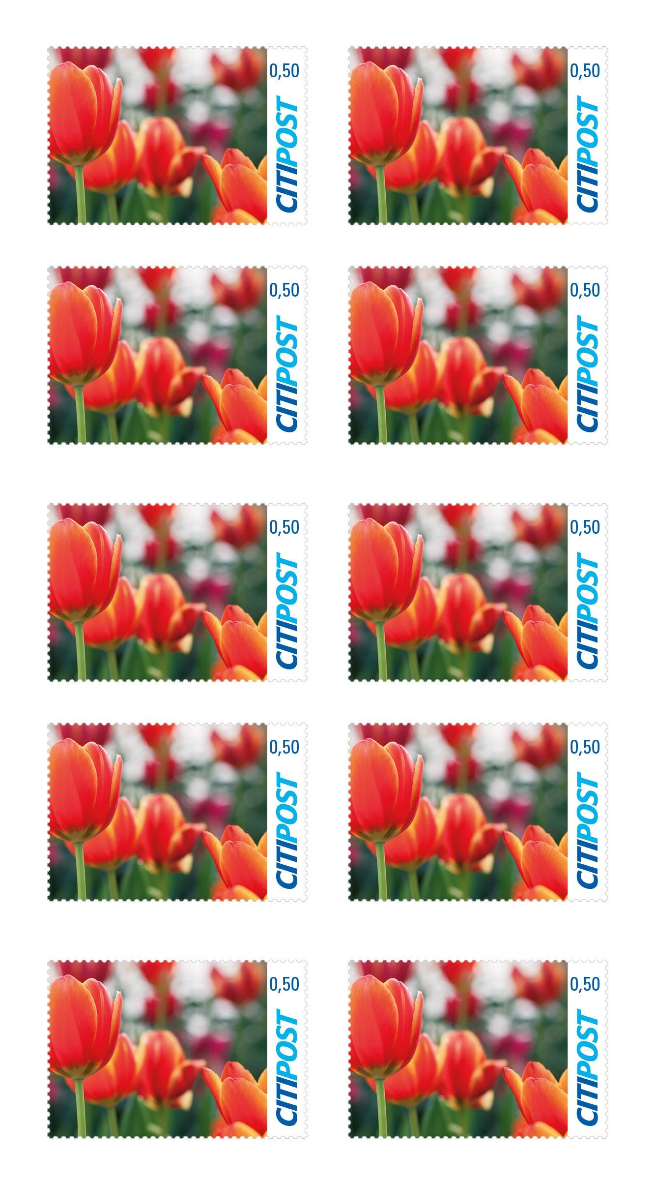 """Markenheft Postkarte """"Tulpe"""" 0,50€"""