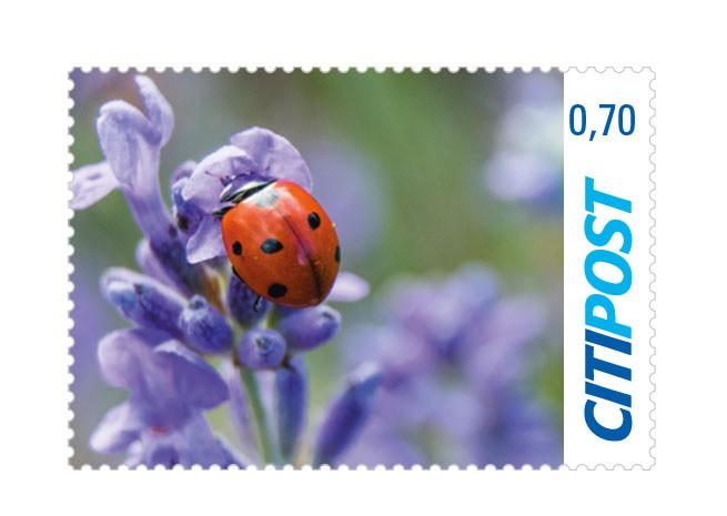 "Markenheft Standardbrief ""Frühling 2020"" 0,70 €"