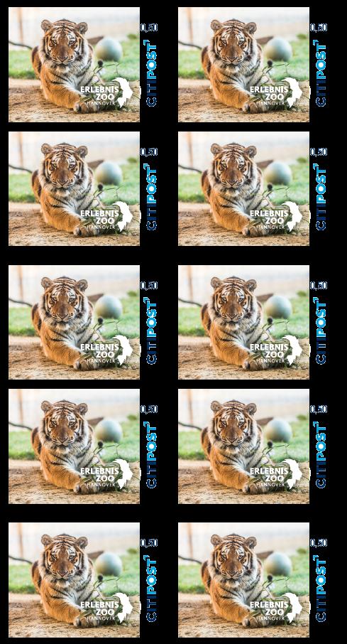 Erlebnis Zoo Postkarte